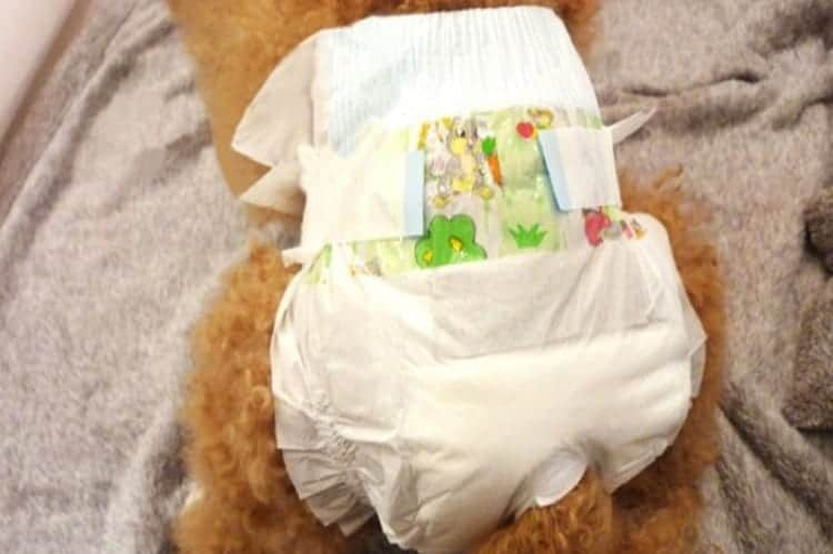 Do You Need Diaper Pads?