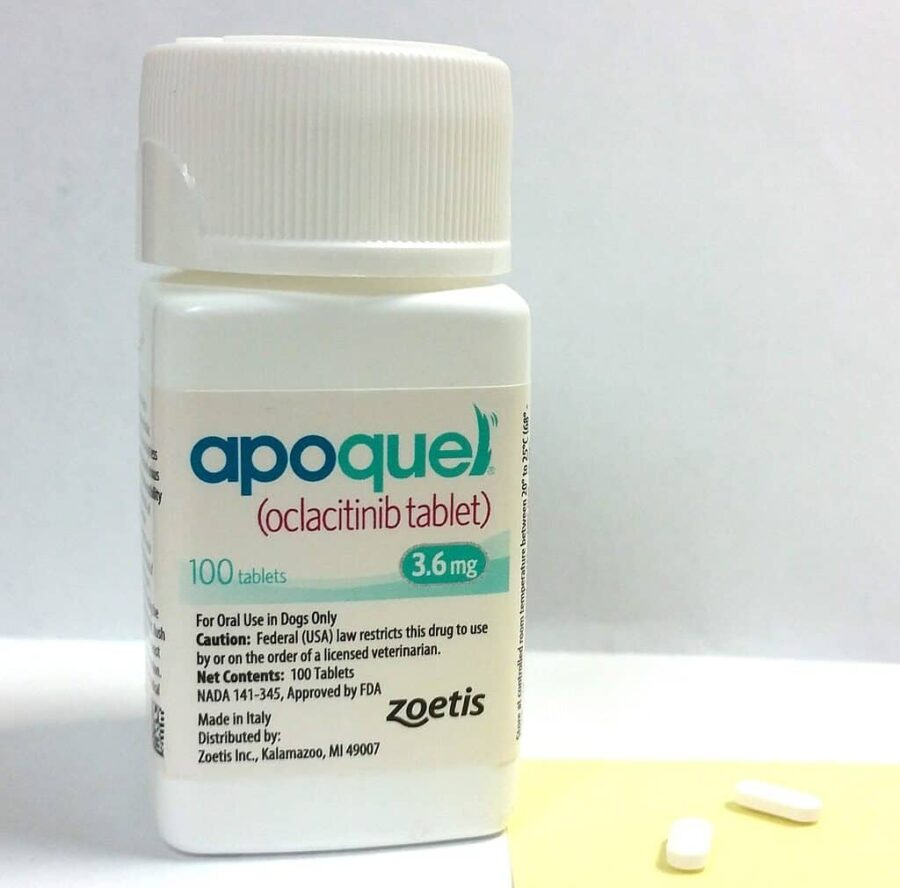 Accidentally gave my dog double dose of Apoquel